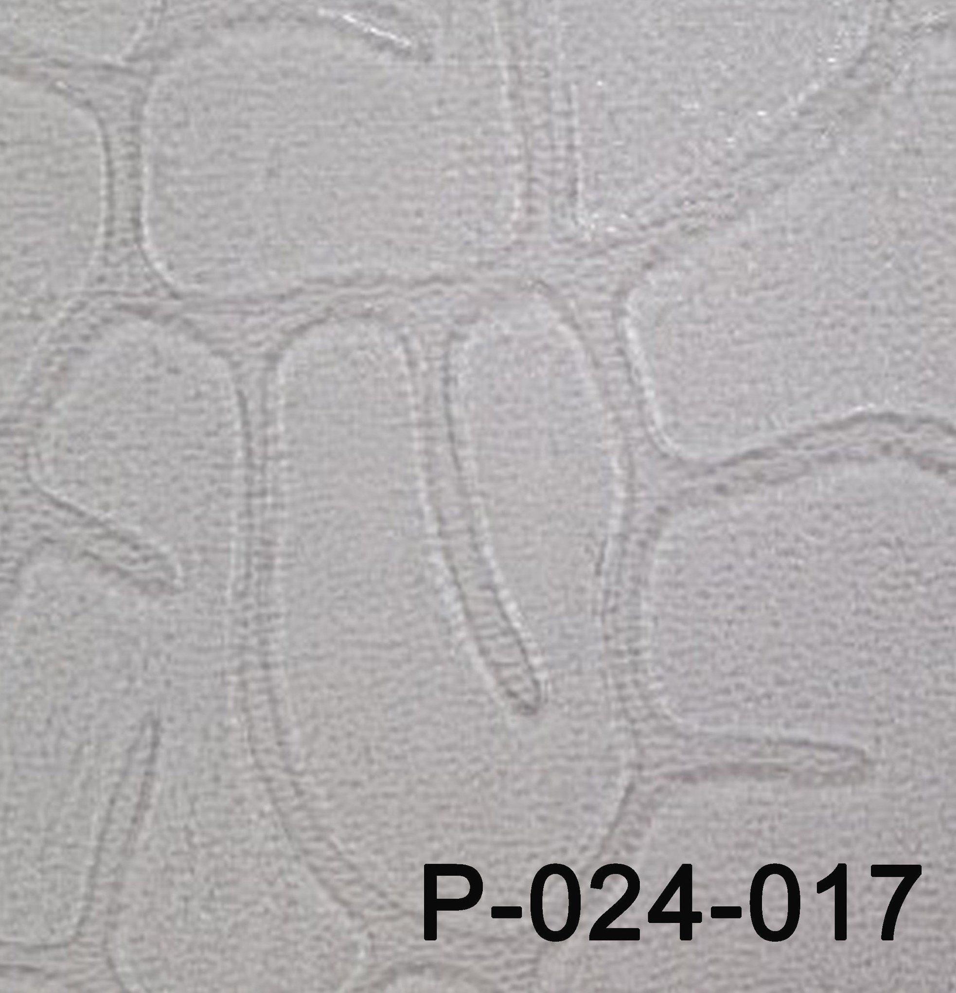 P-24-017