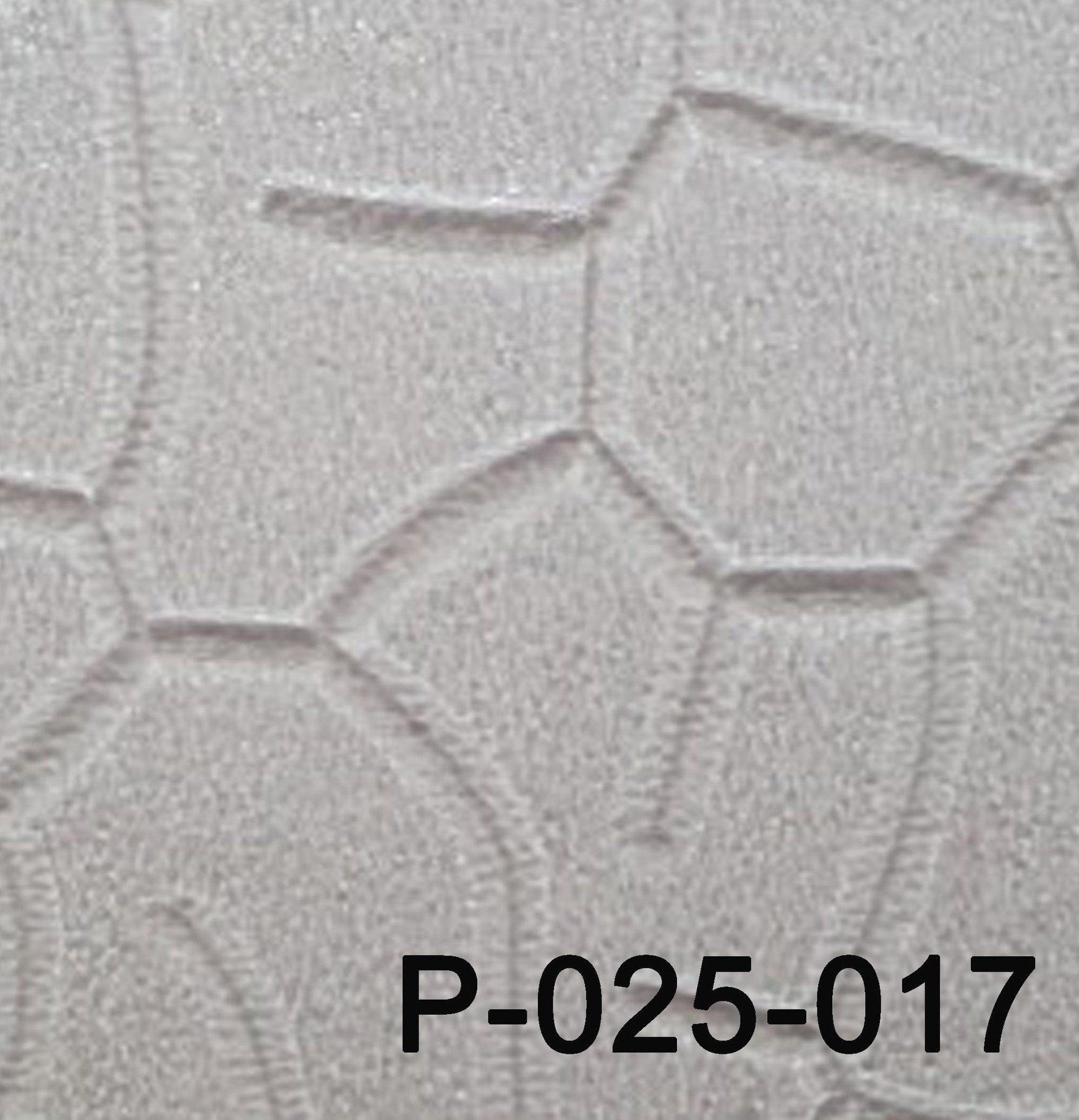 P-25-017